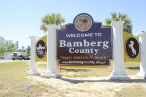 """Volunteers are being sought for a """"Patriotic Pick-up"""" litter clean-up day in Bamberg County. ..."""