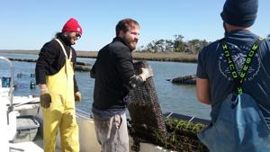 GEORGETOWN – Seafood consumption is increasing and Clemson University researchers are collaborating with researchers from other entities to determine how to help the seafood market grow in South Carolina. ...