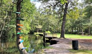 Public parks in Eutawville and North are set to receive some upgrades. ...