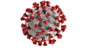 Two more T&D Region residents have died of the coronavirus, according to numbers released Thursday by the S.C. Department of Health and Environmental Control. ...