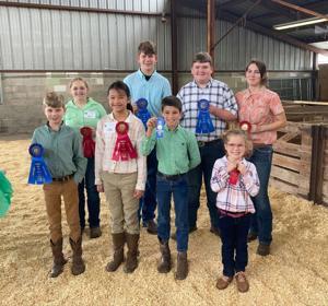 Orangeburg County Fair announces 4-H competition winners