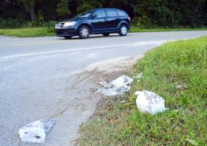 Orangeburg County Litter Control is hosting their fall cleanup event from Saturday, Oct. 16 to Sunday Oct. 31. ...
